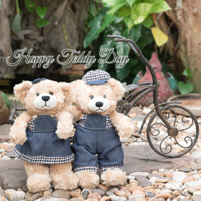 Teddy Day 2021 Wishes Images, Messages