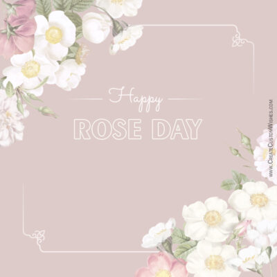 Write Name on Rose Day Wishes Image